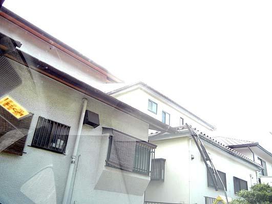 DSCN995206.jpg